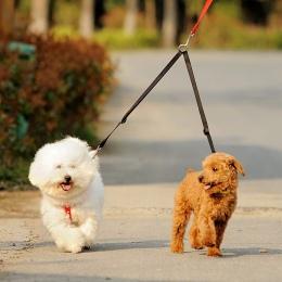 Spacer 2 dwa psy smycz podwójne podwójne realizacji smycz