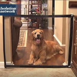 Dropshipping pies bramy genialny siatka dla zwierząt magiczna brama dla psów bezpieczna osłona i instalacja obudowy bezpieczeńst