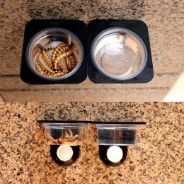 Z tworzywa sztucznego gadów żywności wody miska dla zwierząt owady pająk hodowli zbiornik pole dozownik dozownik ściany Sucker d
