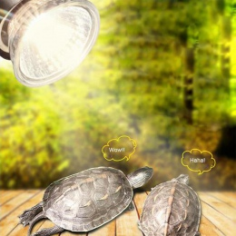 UVB 3.0 lampa gadów żarówka żółw pławiąc się światło UV żarówki lampa grzewcza płazy jaszczurki regulator temperatury