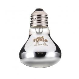 25/50/75/100 W Mini gadów lampy światła dziennego światła termicznego dla tej lampy węże jaszczurki żółw E27 gady płazów zwierzą