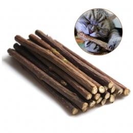 15 i 20 sztuk naturalna kocimiętka dla zwierząt domowych kot molowy pasta do zębów kij Matatabi Actinidia owoce Silvervine kot p