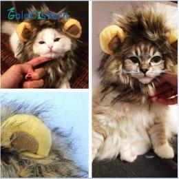 Śmieszne słodkie kostium dla zwierząt Cosplay lew peruka z grzywą Cap kapelusz dla kot Halloween boże narodzenie ubrania Fancy D