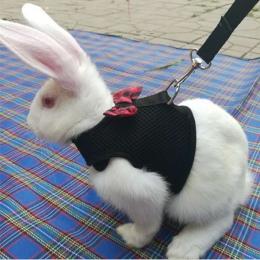 Nowy czarny królik smycz realizacji kamizelka małe zwierzęta siatki bawełniane obroże kot chomika czerwone uprzęże S M L szelki