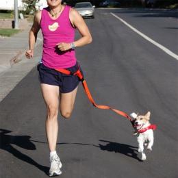 Atrakcyjny piękna kolorowe popularne trakcji ciągnięcie smycz dla zwierząt domowych do biegania Jogging wygodne bezpieczne Fashi