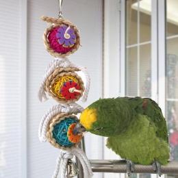 Cockatiel papuga zabawki drewniane stali nierdzewnej dzwonek zawieszany klatka zabawki dla papugi ptak wiewiórka śmieszne łańcuc
