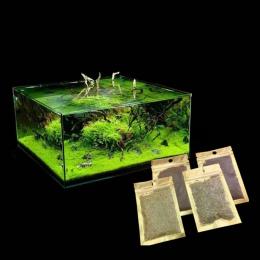 Roślin wodnych Waterweed wody nasion trawy roślin akwariowych nasiona, para/Cowhair/miłość/Lucky/serce/czerwony liść fish tank w