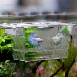 Akwarium przezroczysta podwójna miska walki ryby mini domek inkubator Box dla narybku izolacja wylęgarnia gadów klatka Turtle Ho