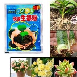 Bonsai roślin szybkiego wzrostu korzenia leczniczych hormon organy regulacyjne uprawy sadzonka odzyskiwania kiełkowania wigor po