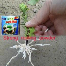 2 sztuk kwiat mocny zakorzenienia w proszku rosnące korzenie sadzonka silne odzyskiwanie korzeń wigor kiełkowanie pomoc nawóz og