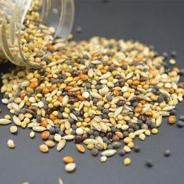 10g/50g Messor structor do kombajnów Ant żywności mieszane ziarna zbóż Ant paszy w gospodarstwie mrówki gniazdo Pet Supplies mro