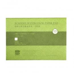 Profesjonalne bawełniane akwarela teksturowane/gładka powierzchnia akwarela Pad, 140lb/300gsm, 20 arkuszy, dostaw sztuki