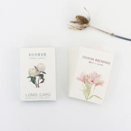 28 arkuszy/zestaw ogrodów Mirabell Mini Lomo pocztówka/kartkę z życzeniami/kartka urodzinowa koperta karty prezent karty wiadomo