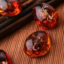 Moda naturalne owady bursztynowy kamień Ornament oryginalność skorpiony butterfly Bee kraba dekoracje DIY rzemiosło prezent