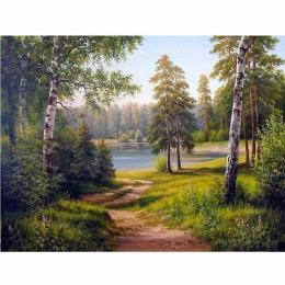 CHUNXIA oprawione obraz DIY według numerów krajobraz akrylowe malarstwo nowoczesne obraz ozdobny do salonu 40x50 cm RA3132