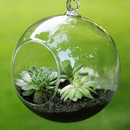 Wisząca szklana kula wazon mikro krajobraz powietrza roślin wazon DIY ślub boże narodzenie Party Decor wazon dekoracji domu nowo