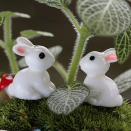 2019 2 sztuk piękny żywicy rośliny królik słodkie mikro krajobraz soczyste ozdoby roślin dekoracji ogród miniatury DIY lalki