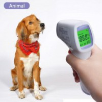 Termometry dla zwierząt
